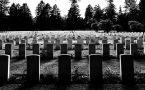 Odszkodowanie za śmierć męża